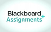 Group logo of Blackboard Support: Assignments